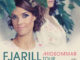 Konzert Fjarill 2020 II-Plakat